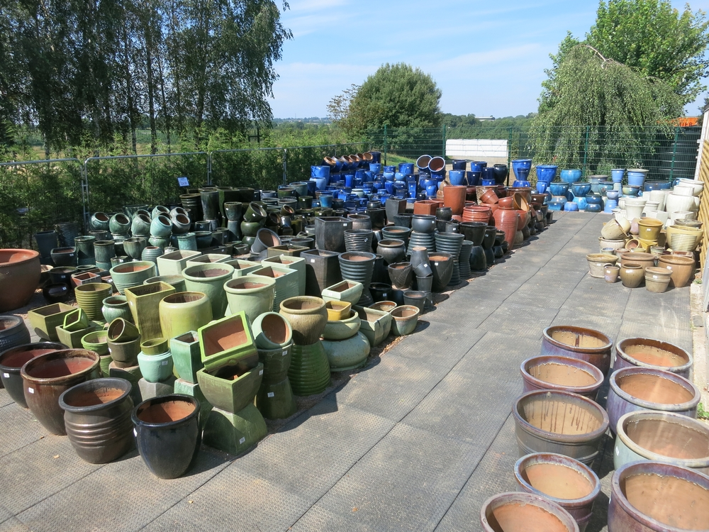 Sharnford Garden Centre Pot Area