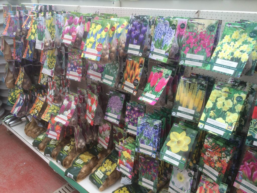 bulbs-sharnford-garden-centre
