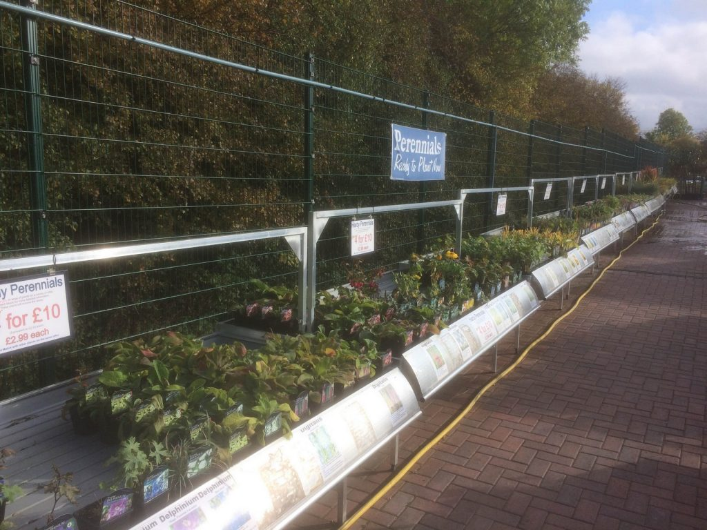 heraceous-perennials-sharnford-garden-centre